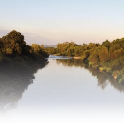 tlo rzeka