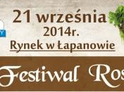 IV Festiwal Rosołu_Plakat