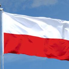 """Konkurs dla organizacji pozarządowych, parafii i innych """"Małopolska. Moja Wolność"""""""